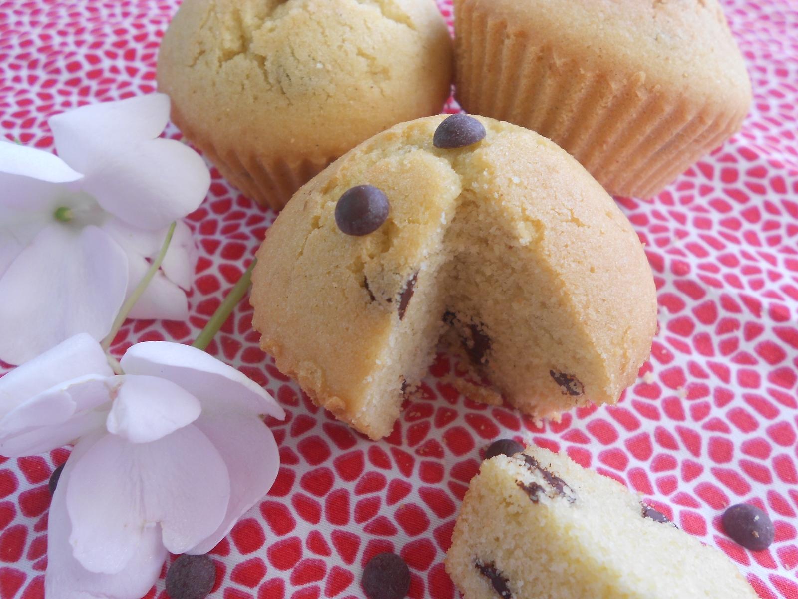 miam, des muffins coco et chocolat